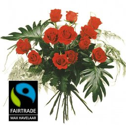 12 Red Fairtrade Max Havelaar-Roses, medium stem w