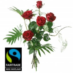 5 Red Fairtrade Max Havelaar-Roses, medium stem wi