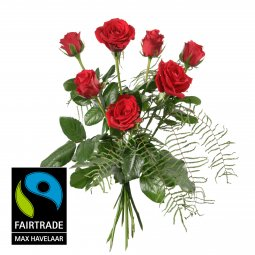 7 Red Fairtrade Max Havelaar-Roses, shortstemmed w