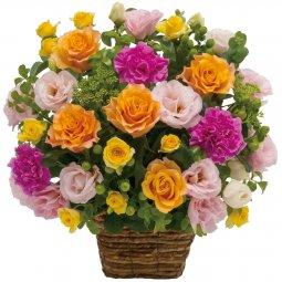 Arrangement of multicolored flowers