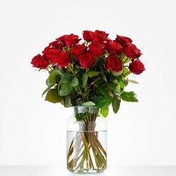 Bouquet: Pure love; excl. vase