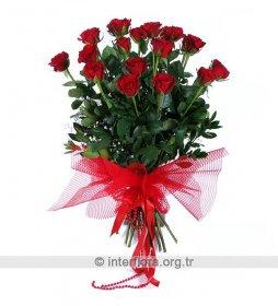 Güllerin Güzeli