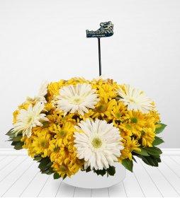 Günün Güzeli Çiçeği